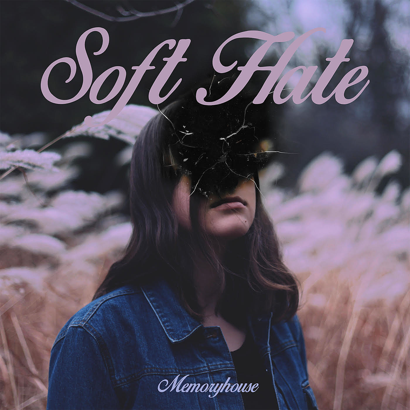 SOFT HATE