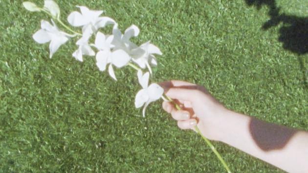BALLAD 5 FLOWER