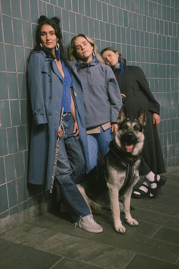 SASSY 009 DOG
