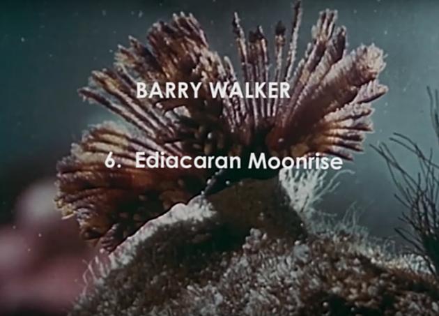 BARRY WALKER MOONRISE