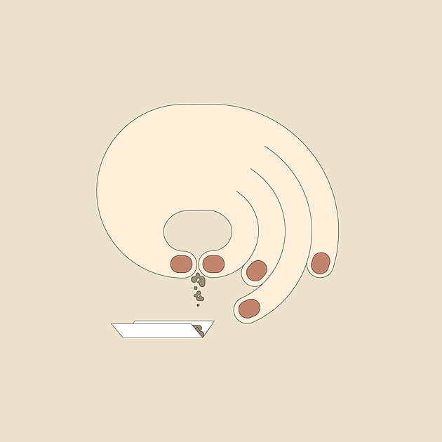 Orinoco_Cover_Art_By_Kajsa_Borg